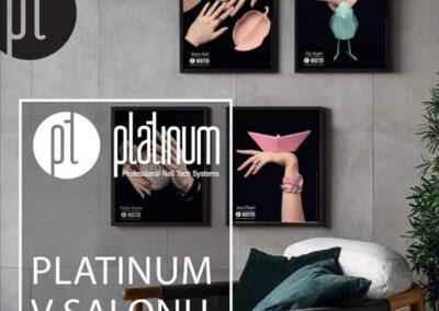 Platinum v salonu
